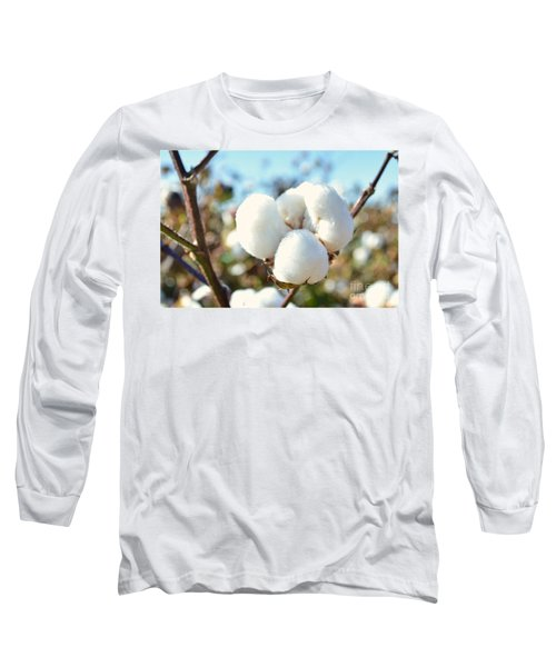 Cotton Boll Iv Long Sleeve T-Shirt by Debbie Portwood