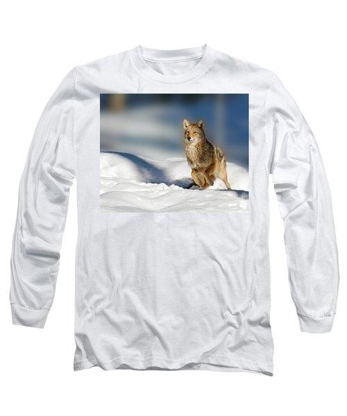 Coyote Go Go Go Long Sleeve T-Shirt
