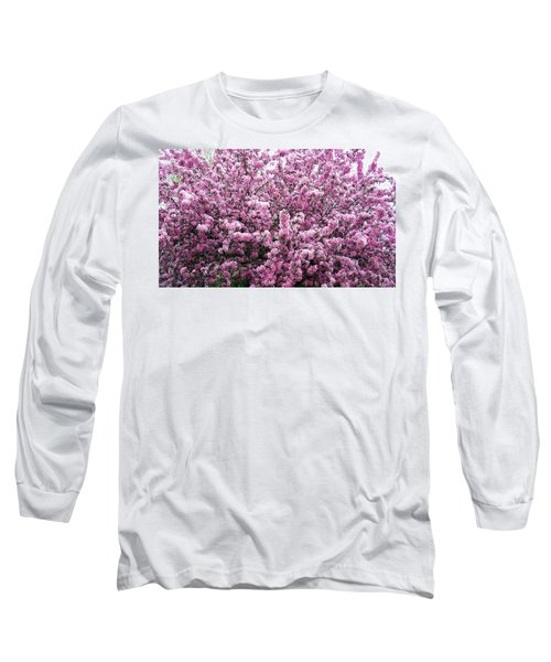 Crab Apple Tree Long Sleeve T-Shirt by Aimee L Maher Photography and Art Visit ALMGallerydotcom
