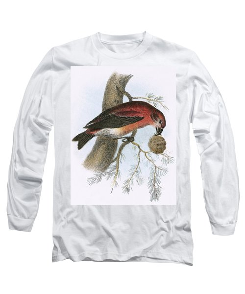 Crossbill Long Sleeve T-Shirt by English School