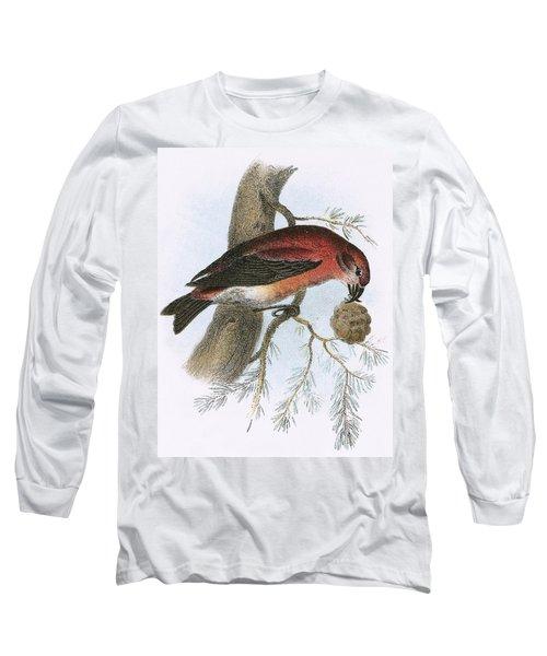 Crossbill Long Sleeve T-Shirt