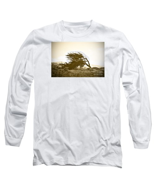 Long Sleeve T-Shirt featuring the photograph Cypress Trees In Monterey by Artist and Photographer Laura Wrede
