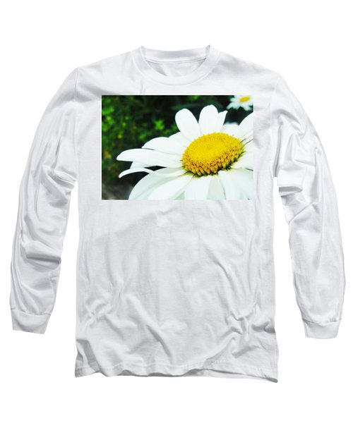 Long Sleeve T-Shirt featuring the photograph Daisy Daisy by Tiffany Erdman