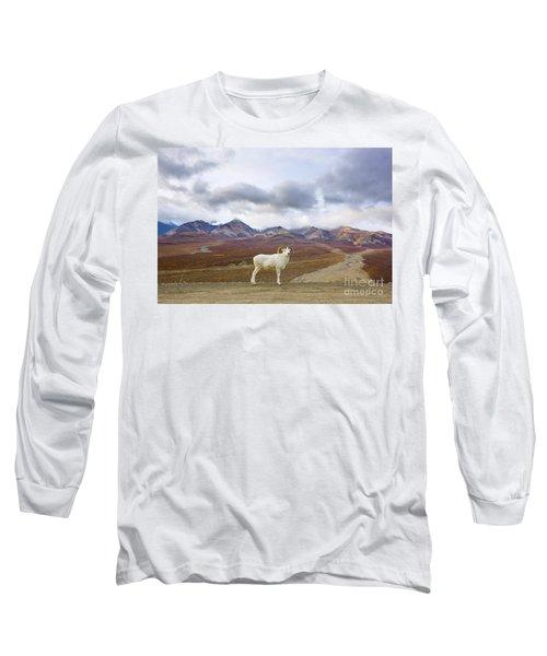 Dalls Sheep Ram Denali National Park Long Sleeve T-Shirt