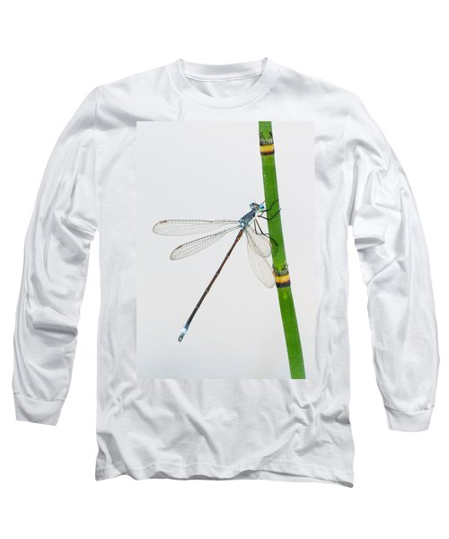 Damselfly On Horsetail Long Sleeve T-Shirt
