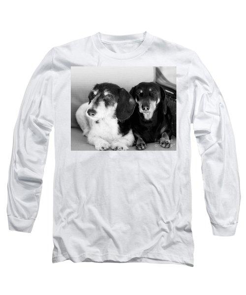 Dapper Doxies Long Sleeve T-Shirt by Erika Weber