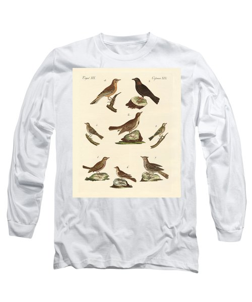 Different Kinds Of Larks Long Sleeve T-Shirt by Splendid Art Prints