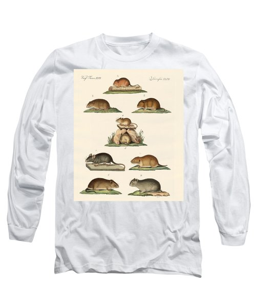 Different Kinds Of Mice Long Sleeve T-Shirt