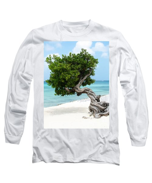 Divi Divi Tree In Aruba Long Sleeve T-Shirt