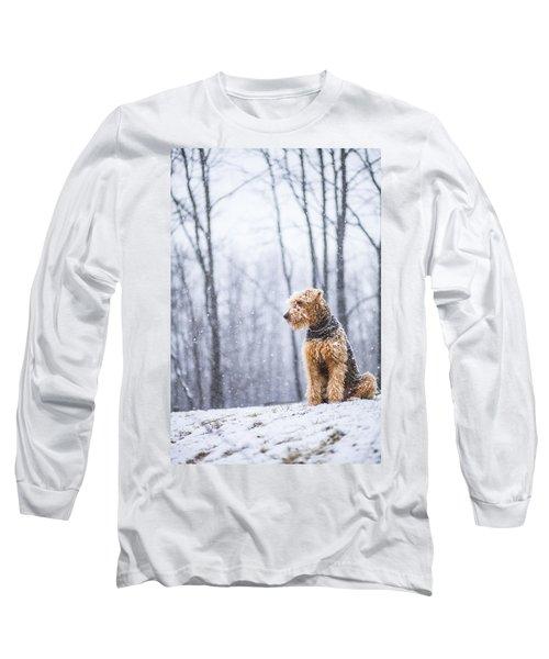 Dog Sits Under The Snowfall Long Sleeve T-Shirt