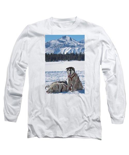 Dog Team Long Sleeve T-Shirt