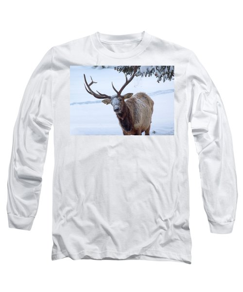 Dumped On Long Sleeve T-Shirt