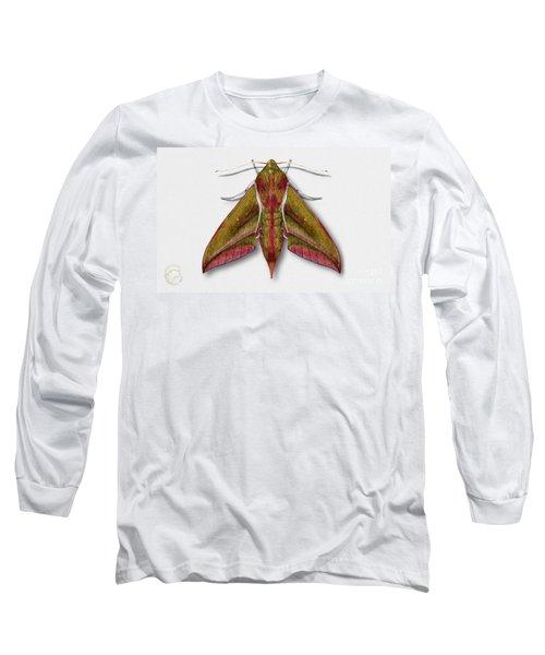 Elephant Hawk Moth Butterfly - Deilephila Elpenor Naturalistic Painting - Nettersheim Eifel Long Sleeve T-Shirt