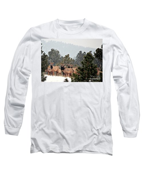Long Sleeve T-Shirt featuring the photograph Elk In The Snowing Open by Barbara Chichester