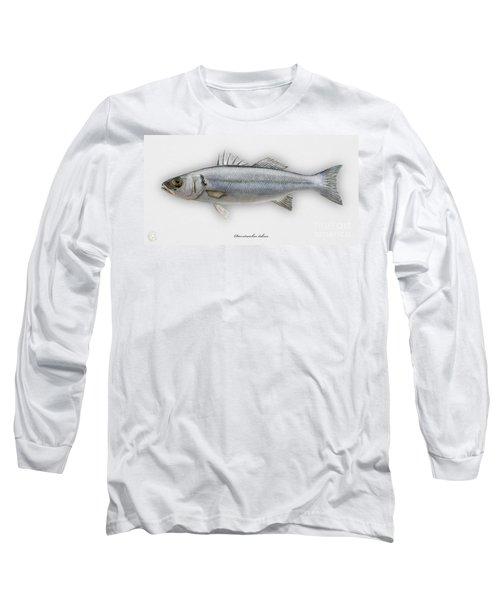 European Seabass Dicentrarchus Labrax - Bar Commun - Loup De Mer - Lubina - Havabor - Seafood Art Long Sleeve T-Shirt