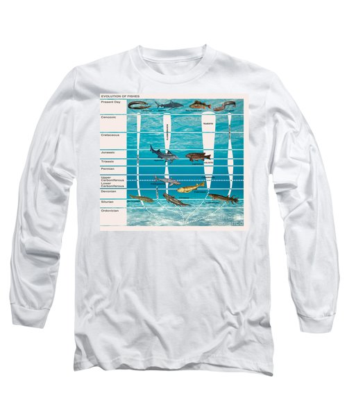 Evolution Of Fishes, Illustration Long Sleeve T-Shirt