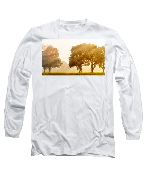 Falls Delight Long Sleeve T-Shirt by James Heckt