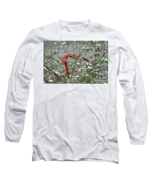 Long Sleeve T-Shirt featuring the photograph Feeding Cardinals by Geraldine DeBoer