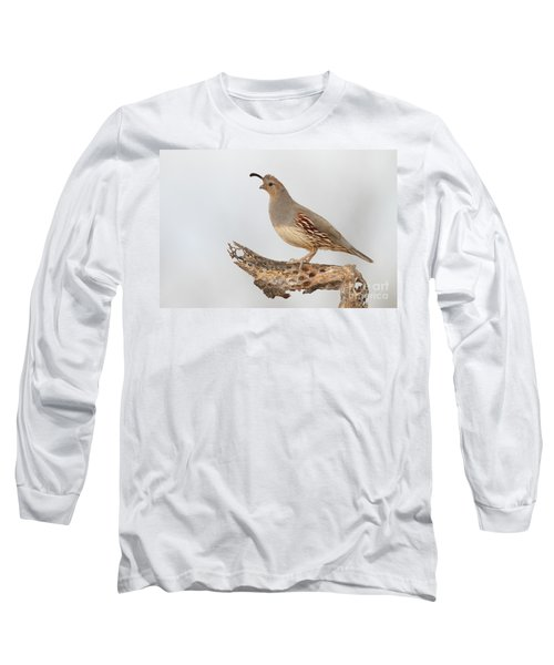 Female Gambel's Quail Long Sleeve T-Shirt