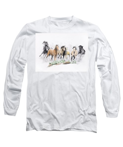 Flight For Freedom Long Sleeve T-Shirt