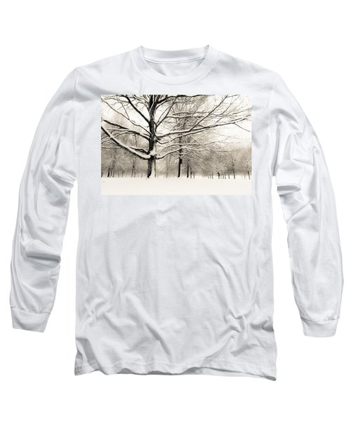 Francis Park In Snow Long Sleeve T-Shirt