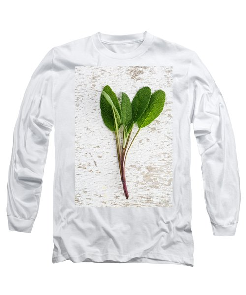 Fresh Sage Long Sleeve T-Shirt