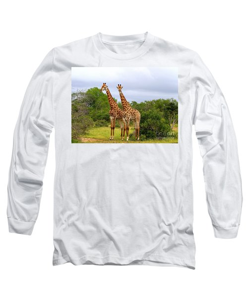 Giraffe Males Before The Storm Long Sleeve T-Shirt