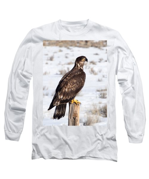 Golden Eagle On Fencepost Long Sleeve T-Shirt