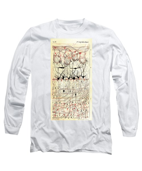 Golgi Olfactory Bulb Of Dog Long Sleeve T-Shirt