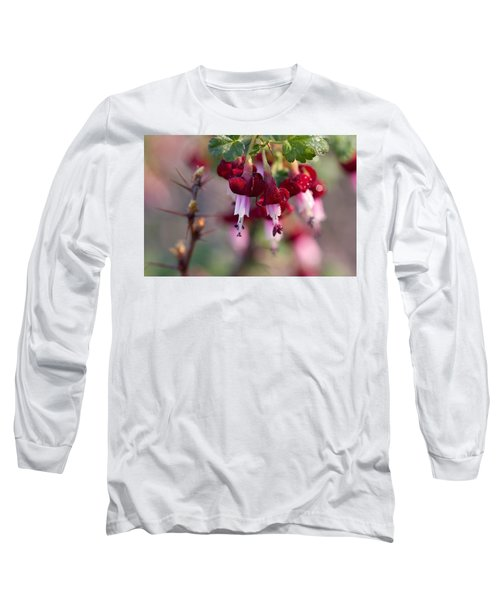 Long Sleeve T-Shirt featuring the photograph Gooseberry Flowers by Peggy Collins