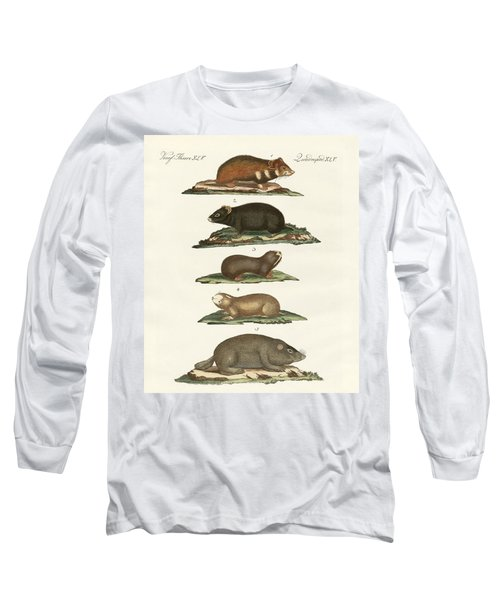 Hamsters And Field Voles Long Sleeve T-Shirt