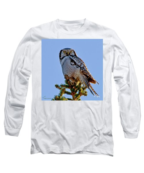 Hawk Owl Square Long Sleeve T-Shirt by Torbjorn Swenelius