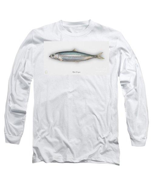 Herring  Clupea Harengus - Hareng - Arenque - Silakka - Aringa - Seafood Art Long Sleeve T-Shirt