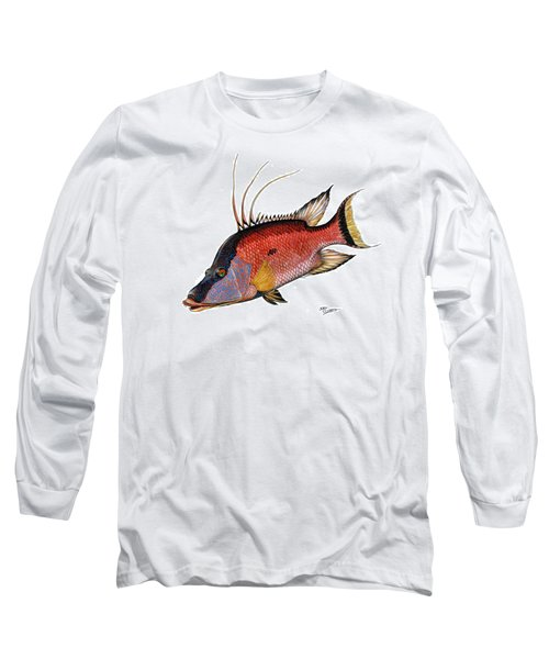 Hogfish On White Long Sleeve T-Shirt by Steve Ozment