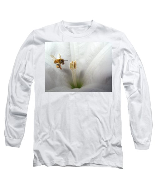 Honey Bee Up Close And Personal Long Sleeve T-Shirt