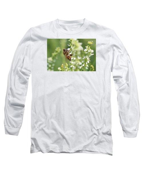 Honeybee On Sweet Clover Long Sleeve T-Shirt by Lucinda VanVleck