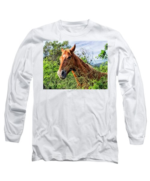 Long Sleeve T-Shirt featuring the photograph Horse 1 by Dawn Eshelman