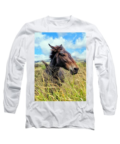 Long Sleeve T-Shirt featuring the photograph Horse 6 by Dawn Eshelman