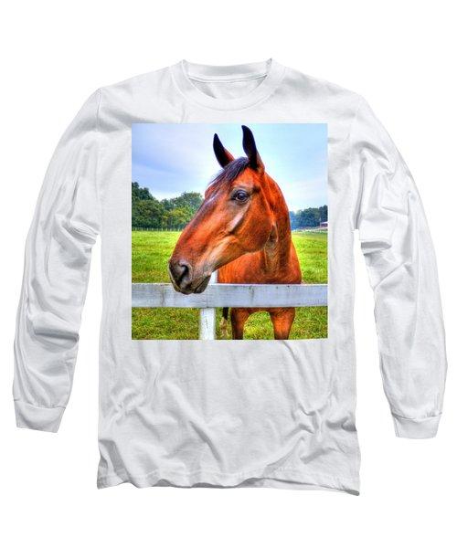 Long Sleeve T-Shirt featuring the photograph Horse Closeup by Jonny D