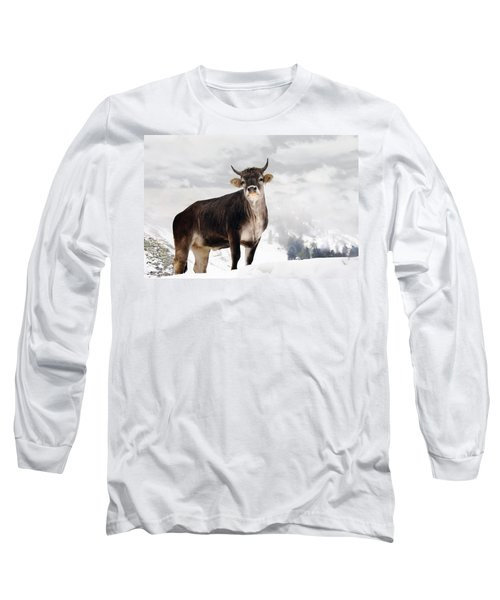 I Don't Like Snow Long Sleeve T-Shirt