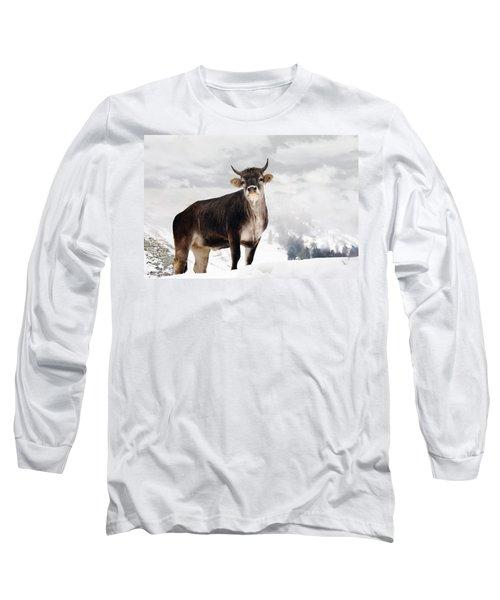 I Don't Like Snow Long Sleeve T-Shirt