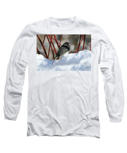 January Snow In New England Long Sleeve T-Shirt