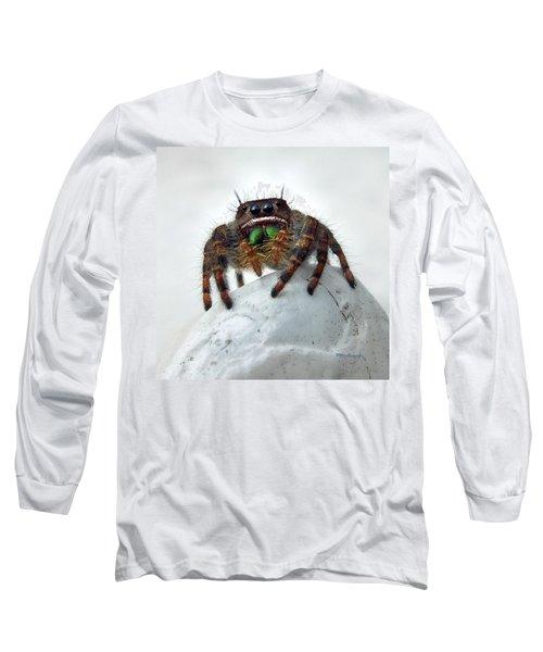 Jumper Spider 2 Long Sleeve T-Shirt