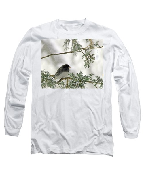 Long Sleeve T-Shirt featuring the photograph Junco In Snowstorm by Paula Guttilla