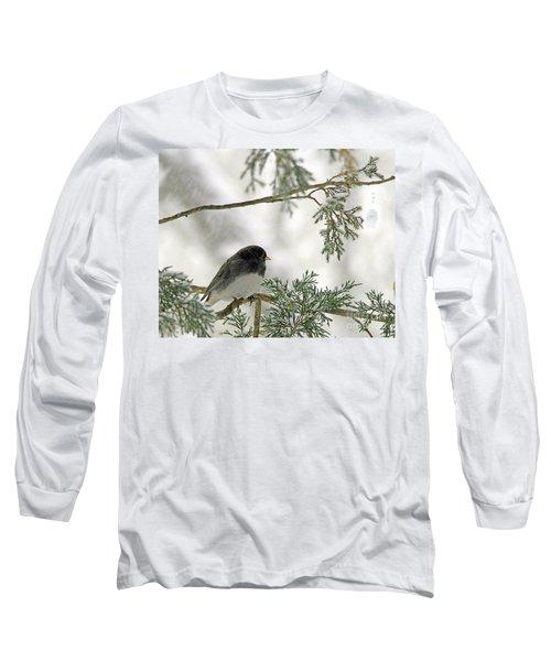 Junco In Snowstorm Long Sleeve T-Shirt by Paula Guttilla