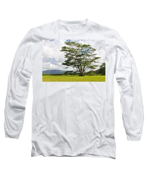 Kauai Umbrella Tree Long Sleeve T-Shirt
