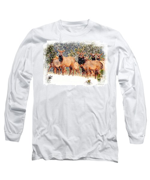 Let It Snow - Barbara Chichester Long Sleeve T-Shirt