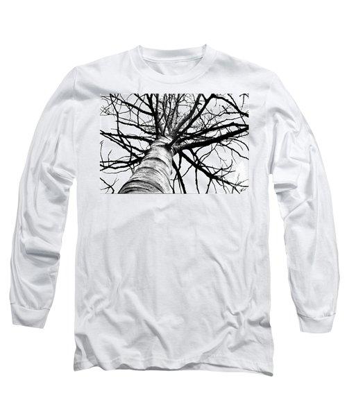 Lone Birch Long Sleeve T-Shirt