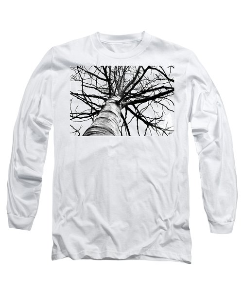 Lone Birch Long Sleeve T-Shirt