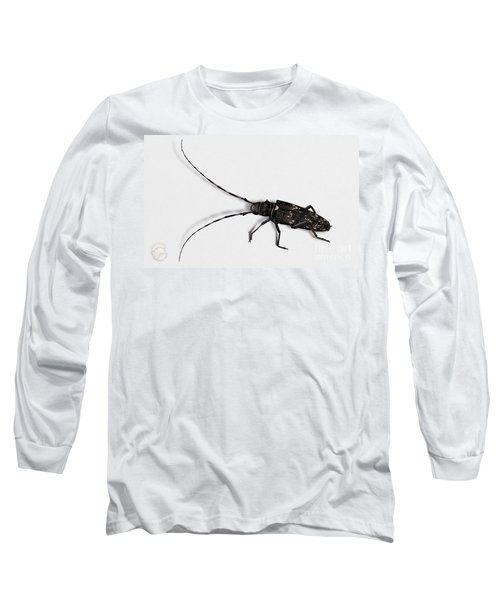 Long-hornded Wood Boring Beetle Monochamus Sartor - Coleoptere Monochame Tailleur - Long Sleeve T-Shirt